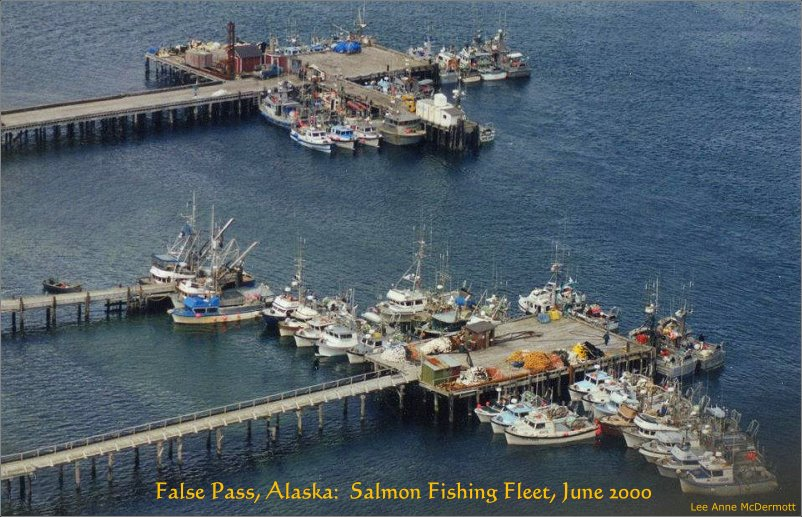 False Pass, Alaska: Salmon Fishing Fleet, June 2000