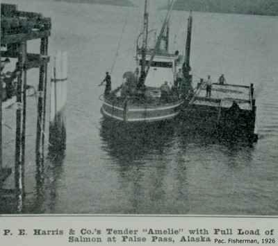 M/V Amelie at P.E. Harris cannery, False Pass, Alaska, 1926
