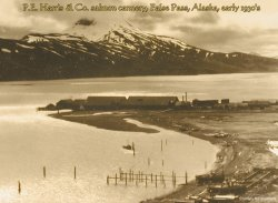 P.E. Harris salmon cannery, False Pass, Alaska, early 1930's